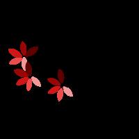 lotuss-perles-creations